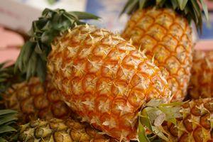 沖縄スナックパイン通信販売 ボゴール種国産パイナップルを販売取寄。5本 沖縄県産