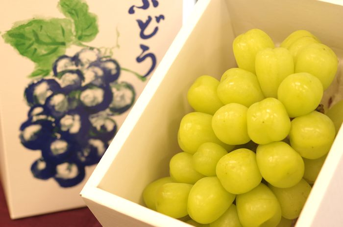 雄宝ぶどう 価格 ゆうほう葡萄 1房 山梨 他産地 約500g 倉庫