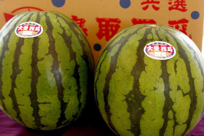 大栄西瓜販売。鳥取県大栄西瓜組合協議会 L~4L 2玉
