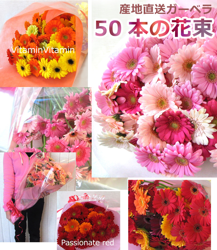 hana-club | Rakuten Global Market: Gerbera 50 birthday celebration ...