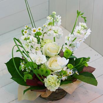 送料無料 誕生日 開店祝い 開院祝い プレゼント おまかせ ホワイト系フラワーアレンジメント 花束 開院祝い 花 人気ランキング 花ギフト 花束 結婚記念日 (就任 送別 誕生日 などにも) バラ 就任 送別 99 花束