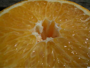 Dekopon (Shiranui) grade 1 grafted seedling fruit trees fruit seedlings citrus