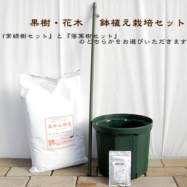 税込 ランキングTOP5 培養土とスリット鉢 肥料の簡単スタートセット 初心者向け 果樹 果樹苗 資材 花木鉢植え栽培セット