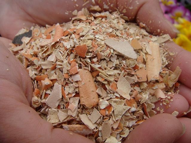 有机玫瑰肥螃蟹壳治疗螃蟹壳 (1 公斤) 肥料的条件
