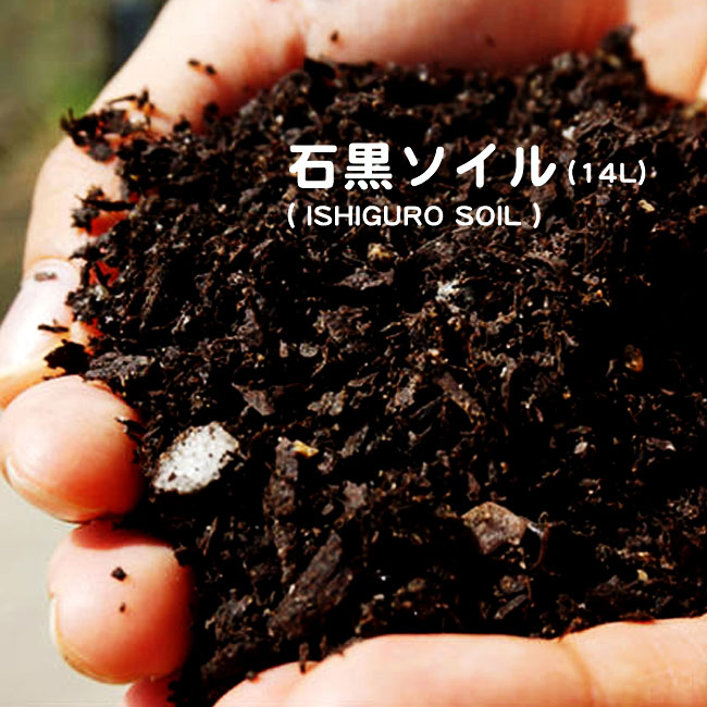 Hana Online Set A Nothing Special Black Soil Ishiguro Soil 14l