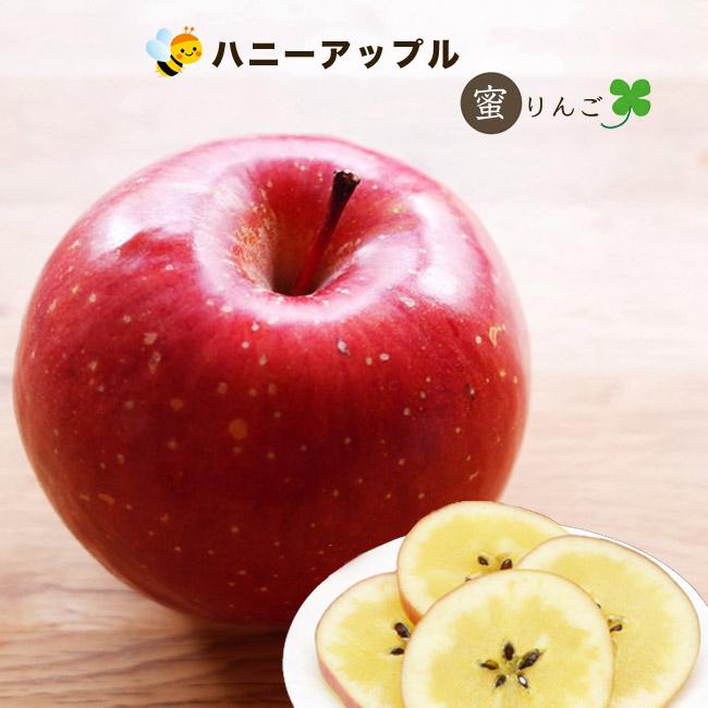 メーカー公式 究極の蜜りんご りんご 苗木 卸売り ハニーアップル 苗 1年生 接ぎ木