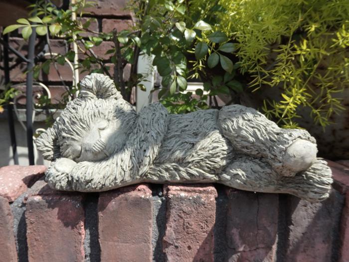 イングリッシュ 英国 ガーデニング ガーデン『Teddy Bear・スリーピングベアー』