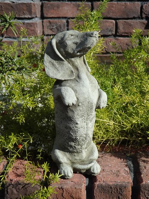 ガーデニング ガーデン ドッグ イングリッシュ 英国 雑貨 ストーン製 『English Standing Duchshund』