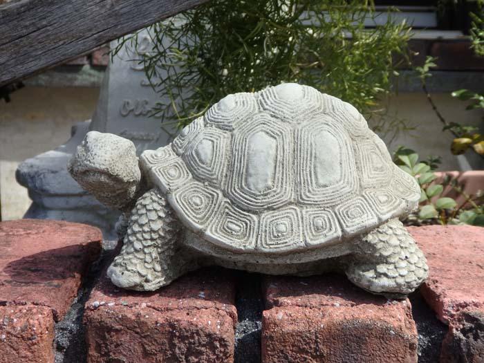 かめ アニマル イングリッシュ 英国ガーデニング ガーデン 雑貨 ストーン製【花遊び】『English Standing Turtle』
