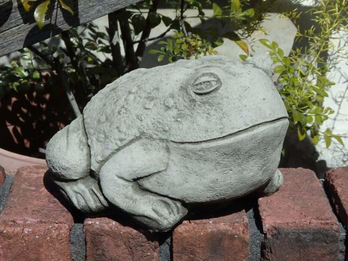 イングリッシュ ガーデニング ガーデン 雑貨【NEW】『English Bull Frog』