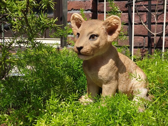 ガーデニング ガーデン ライオン 置物 樹脂アニマル 動物 雑貨【花遊び】『ベビーライオン』