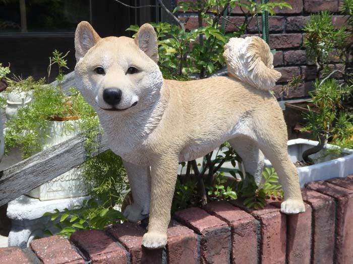 ガーデニング ガーデン 雑貨『柴 犬・L』