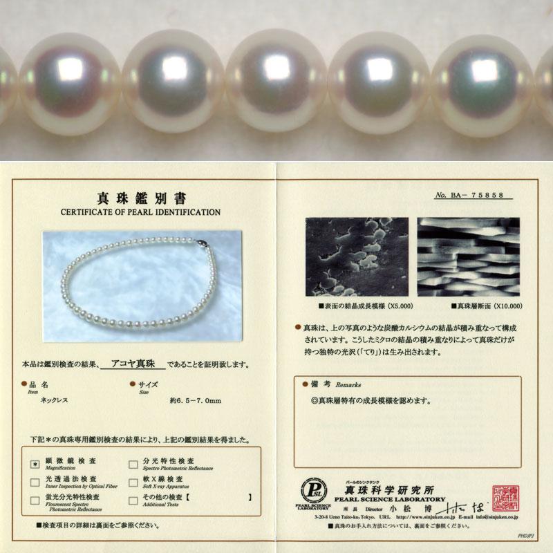 珍珠贝珍珠项链BA 75,858 6.5mm~7.0mm雪花膏派绿色的粉红色!