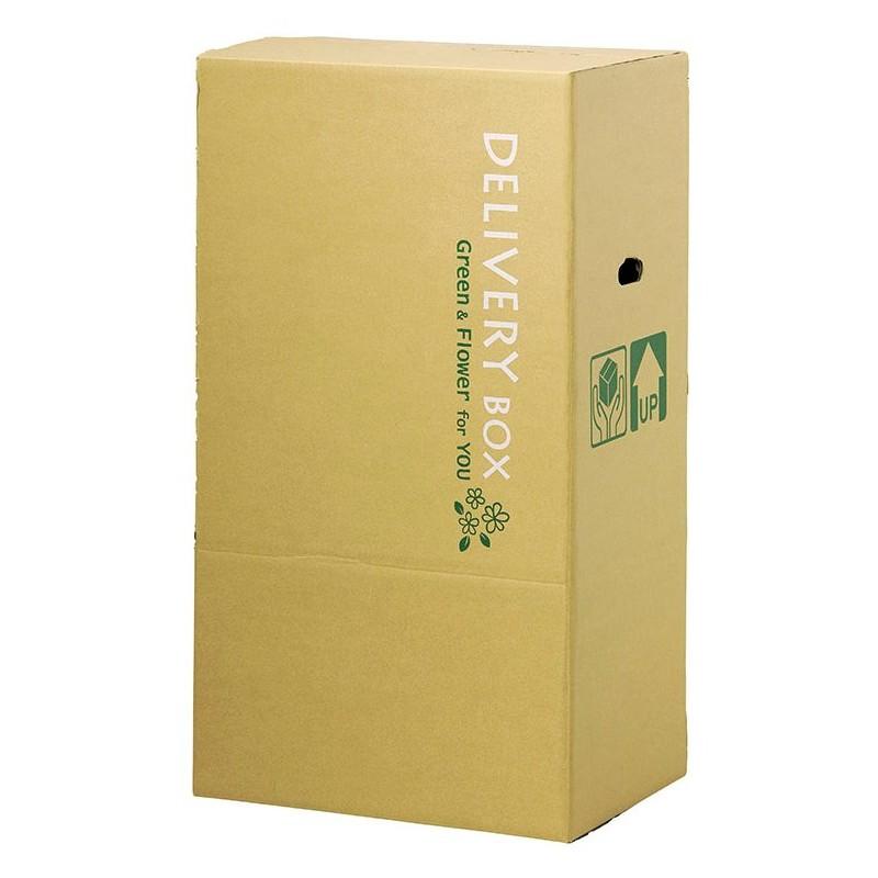 paseo/デリバリーボックス/D-K-L【01】【取寄】[10枚]《 ラッピング用品 ・梱包資材 ラッピング箱・梱包箱 宅配ボックス 》