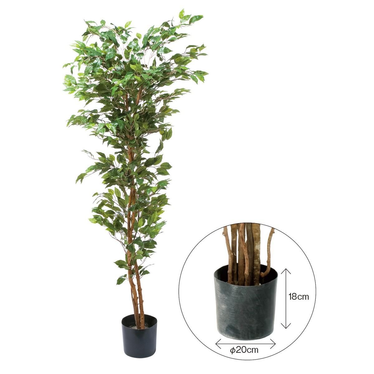 【直送】【人工観葉植物】YDM/ベンジャミンフィカス 180cm 樹木のみ※ポットなし/GLP1290※返品・代引不可【01】