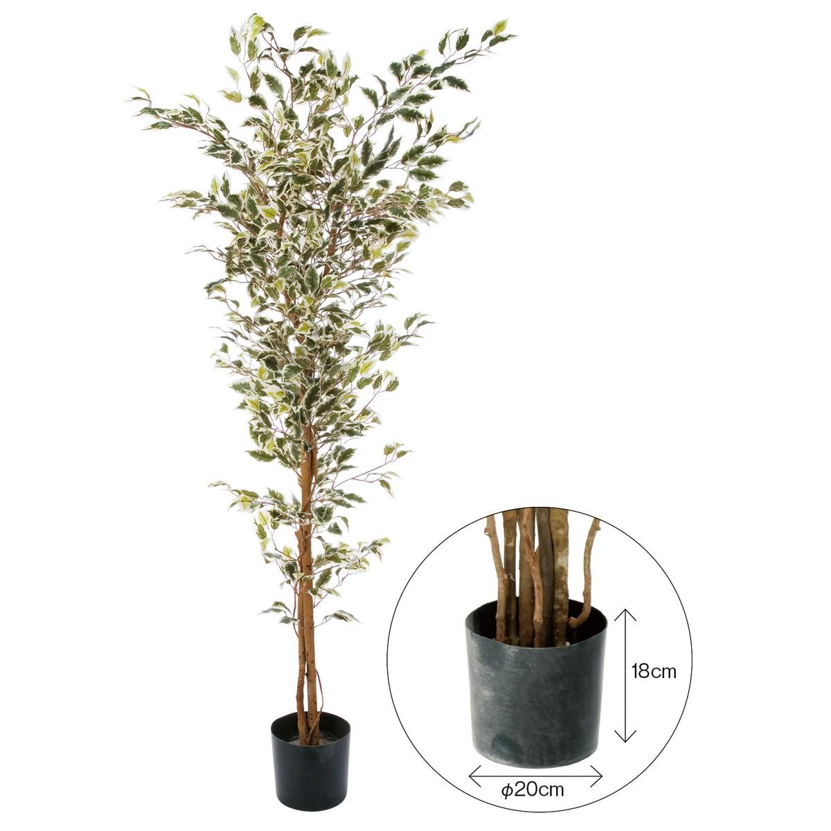 【直送】【人工観葉植物】YDM/ベンジャミンフィカスハワイアン 180cm 樹木のみ※ポットなし/GLP1310※返品・代引不可【01】