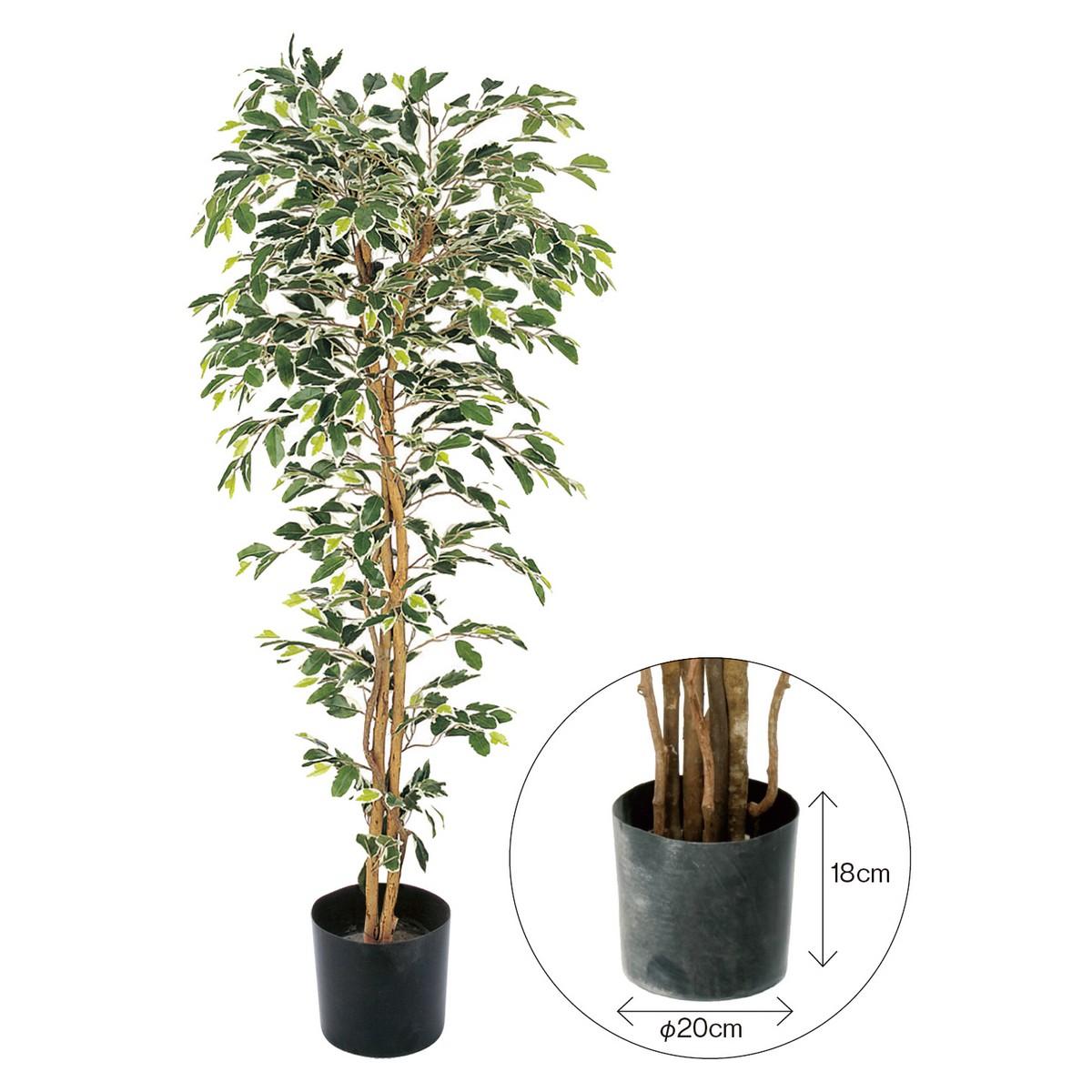【直送】【人工観葉植物】YDM/ベンジャミンフィカスハワイアン 150cm 樹木のみ※ポットなし/GLP1320※返品・代引不可【01】