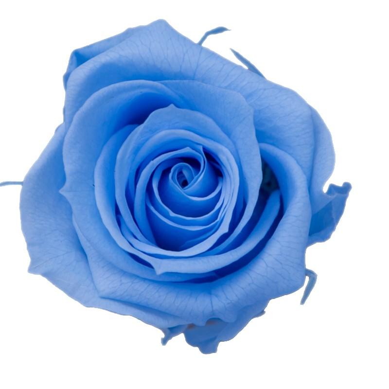 プリザーブドフラワー プリザーブドフラワー花材 バラ ローズ 手作り 材料 即日 激安通販 9輪 プリザーブド ローズM PG002-16プリザーブドフラワー KIARA 入手困難 ベビーブルー