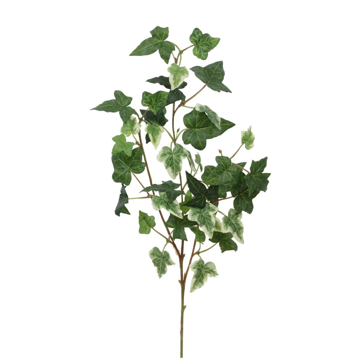 【造花】パレ/ボストンアイビースプレイ TTグリーン/P-8268-60【01】【取寄】[24本]《 造花(アーティフィシャルフラワー) 造花葉物、フェイクグリーン アイビー 》