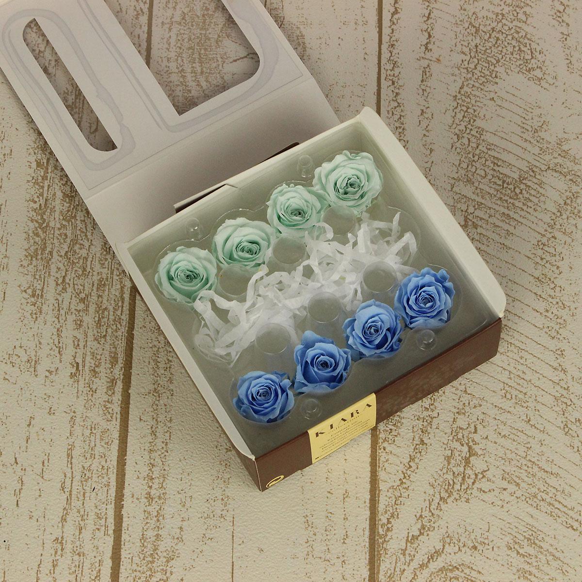 プリザーブドフラワー プリザーブドフラワー花材 バラ ローズ 手作り 材料 即日 ローズカラーアソートS 8輪 美品 KIARA PG001-53プリザーブドフラワー 人気の製品 プリザーブド ミンティグリーン×ベビーブルー