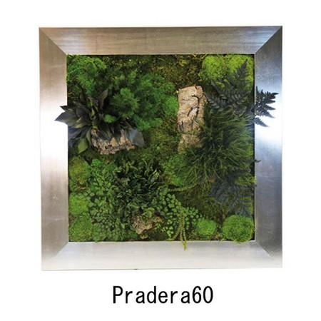 【プリザーブド】ヴェルディッシモ/Pradera プラデラフレーム 60*60(受注生産)/20-302【01】【取寄】