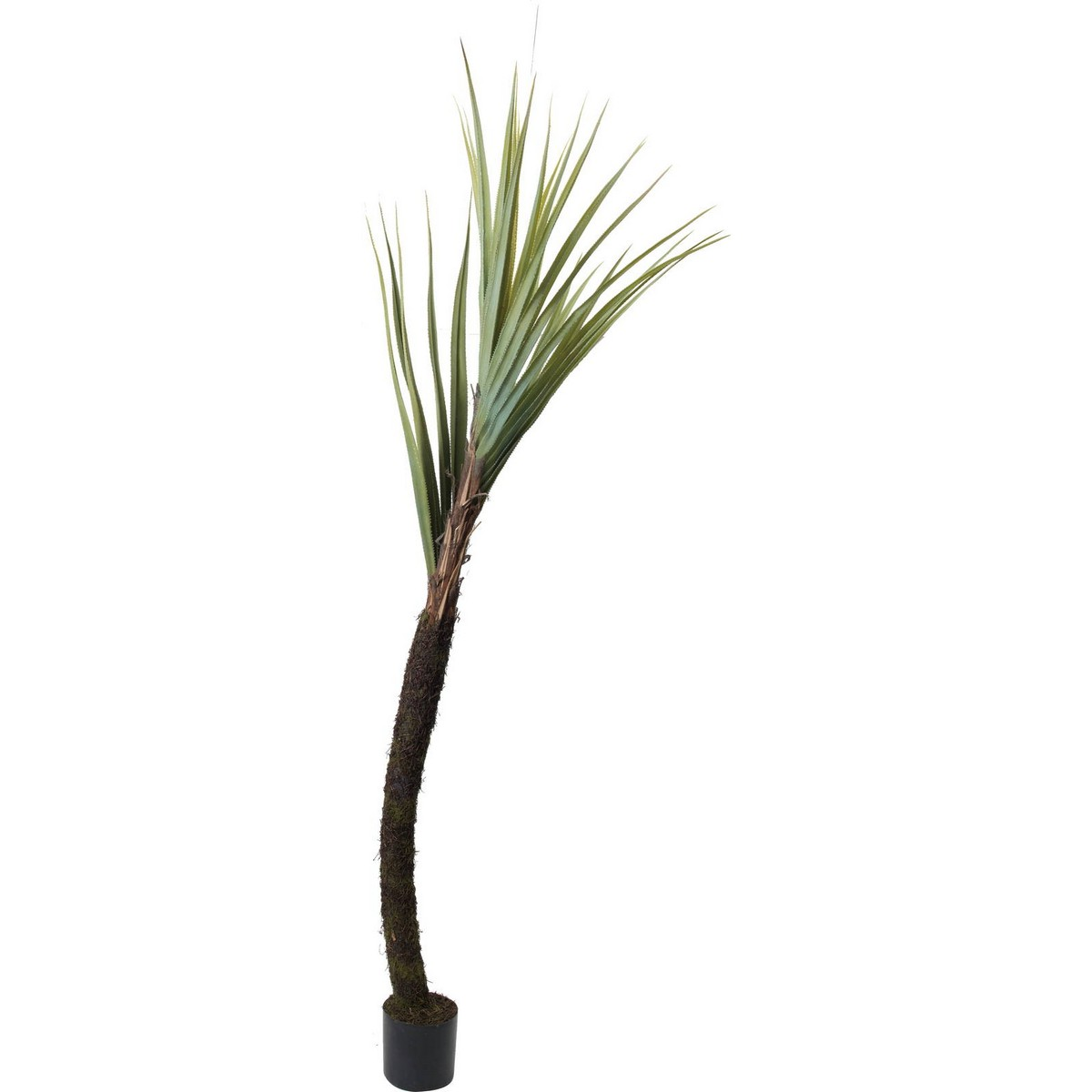 【直送】【人工観葉植物】YDM/240cmパンダナス/GLP-1492 ※返品・代引・キャンセル不可【01】
