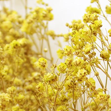 プリザーブドフラワー プリザーブドフラワー花材 カスミ草 手作り 材料 格安 買い取り 即日 プリザーブド 約25g入り イエロー 13710 ヴェルモント