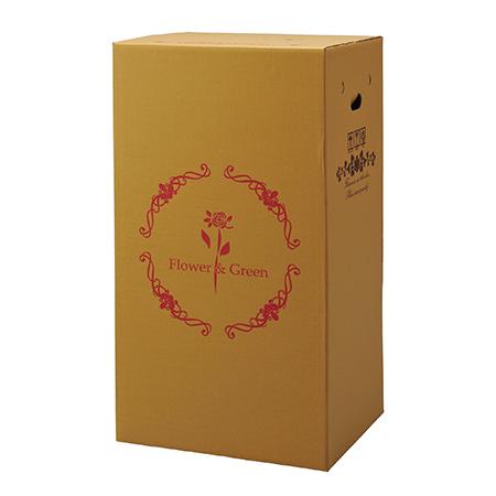 【直送】Gracias/宅配ボックス(横開きタイプ) 鉢物用 P-3/73103※返品・代引き不可【01】[15枚]《 ラッピング用品 ・梱包資材 ラッピング箱・梱包箱 宅配ボックス 》