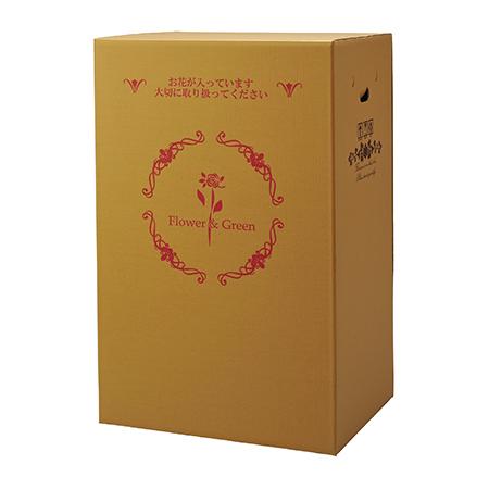 【直送】Gracias/宅配ボックス(横開きタイプ) 大型蘭用 P-8/73108※返品・代引き不可【01】[10枚]《 ラッピング用品 ・梱包資材 ラッピング箱・梱包箱 宅配ボックス 》