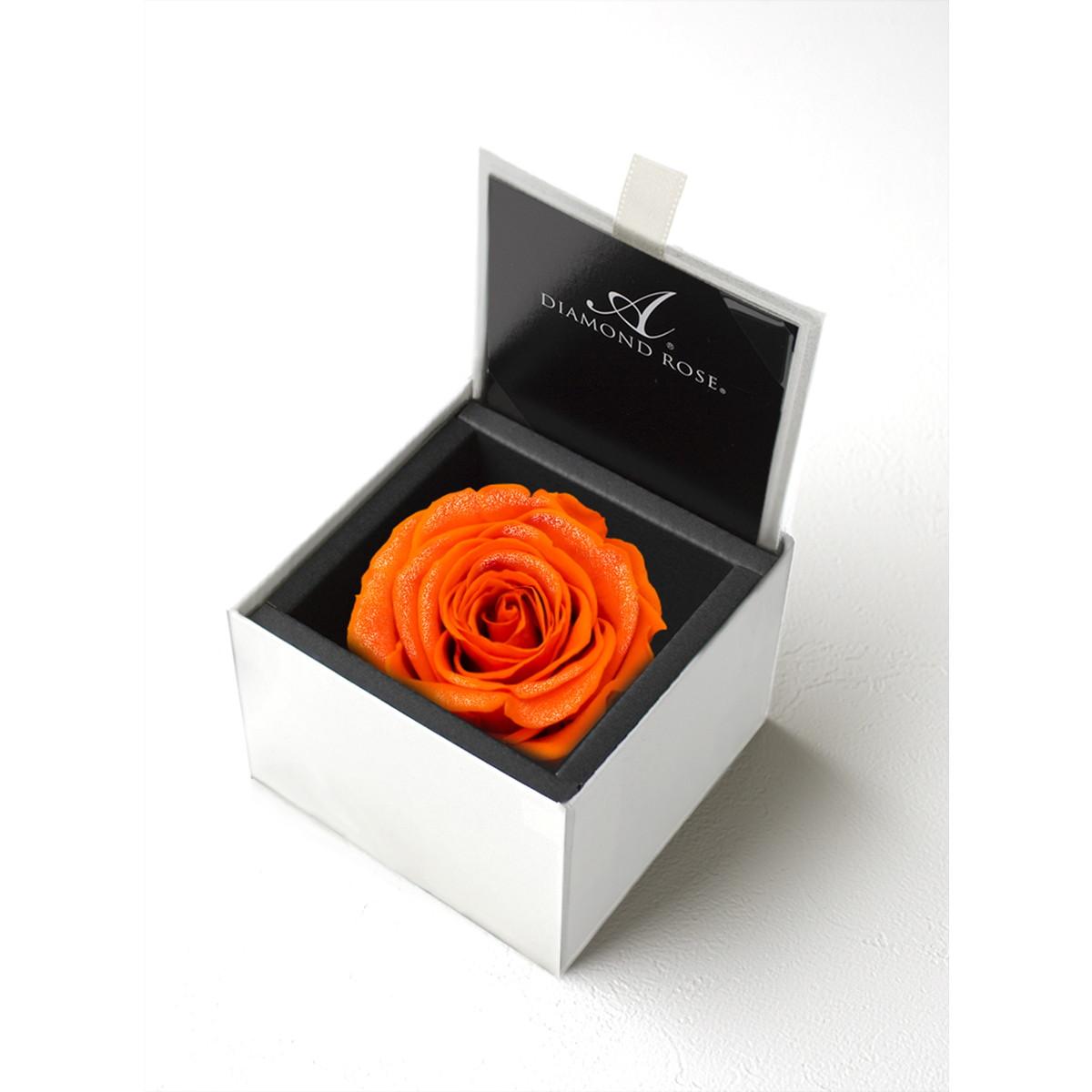【プリザーブドフラワー】アモローサ/ダイヤモンドローズボックス 85(箱:ホワイト) ブライトオレンジ/1203-43【07】【取寄】[6箱]