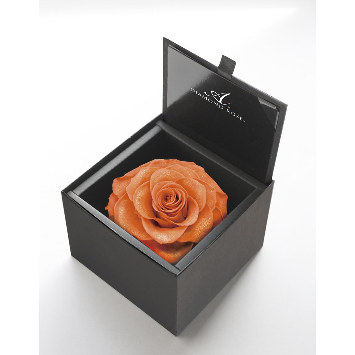 【プリザーブドフラワー】アモローサ/ダイヤモンドローズボックス 105(箱:マットブラック) ブライトオレンジ/1204-43【07】【取寄】[6箱]
