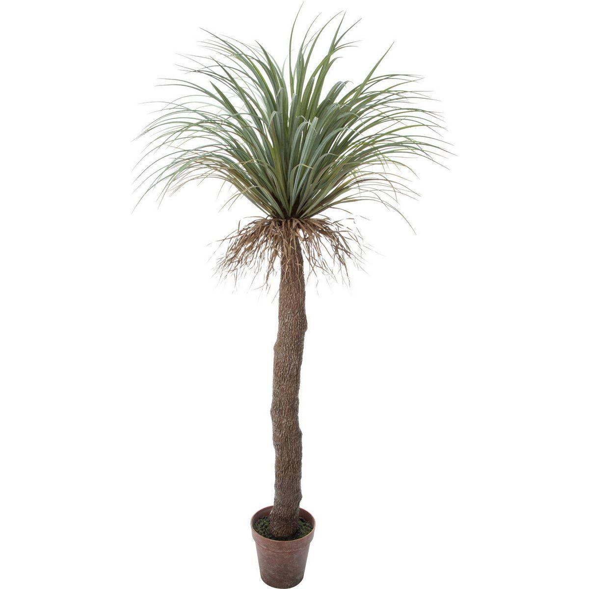 【直送】【人工観葉植物】YDM/ユッカロストラータ/GLP-1523-GR ※返品・キャンセル不可【01】