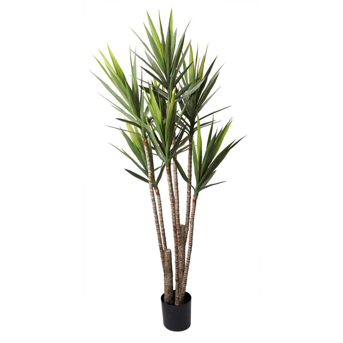 【直送】【人工観葉植物】YDM/ユッカツリー グリーン/GLP-1524-GR ※返品・代引不可【01】