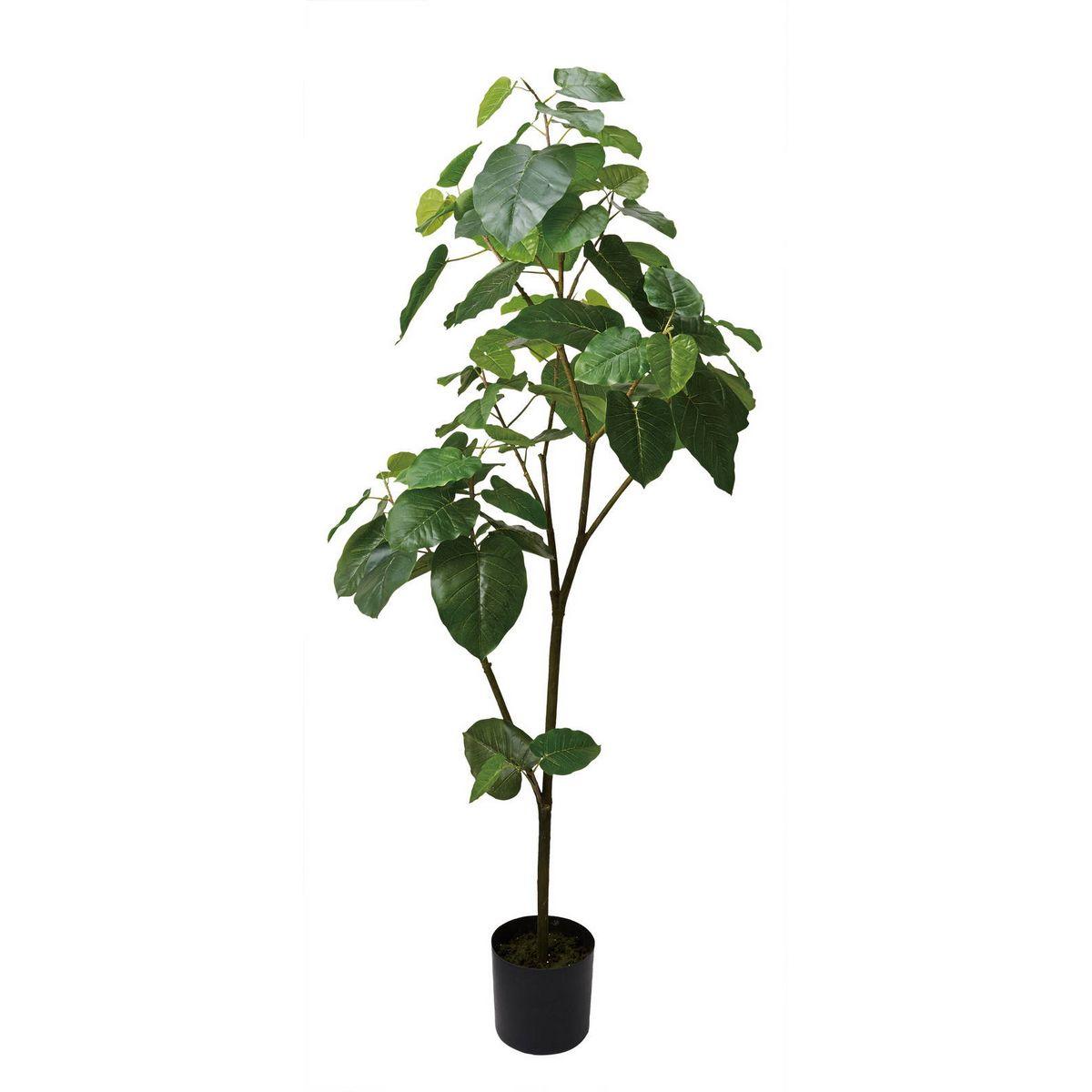 【直送】【人工観葉植物】YDM/ウンベラータ/GLP-1512 ※返品・代引・キャンセル不可【01】