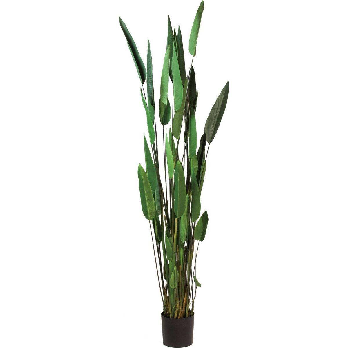 【直送】【人工観葉植物】YDM/カンナ/GLP-1513 ※返品・代引不可【01】《 造花(人工観葉植物) 人工観葉植物「か行」 その他「か行」人工観葉植物 》