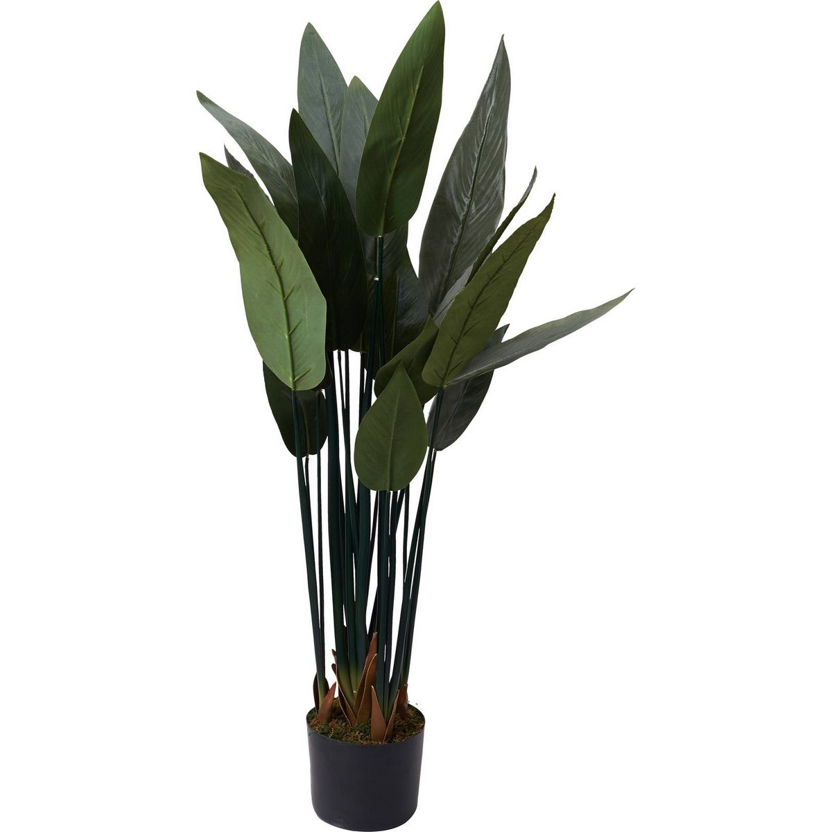 【人工観葉植物】YDM/120CMストレリチアノンリーフ グリーン/GLP-1521-GR【01】【取寄】