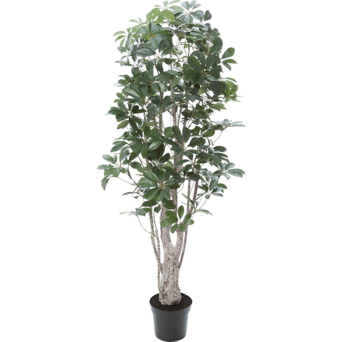 【直送】【人工観葉植物】YDM/シェフレラ グリーン/GLP-1518-GR ※返品・キャンセル不可【01】
