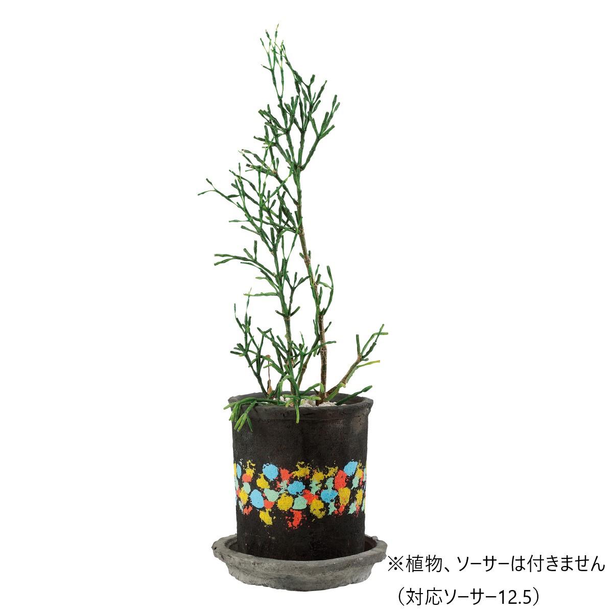 花ごころDo!/アンティークポット10.5/12 ブラックペイントBF/68911【01】【取寄】[12個]