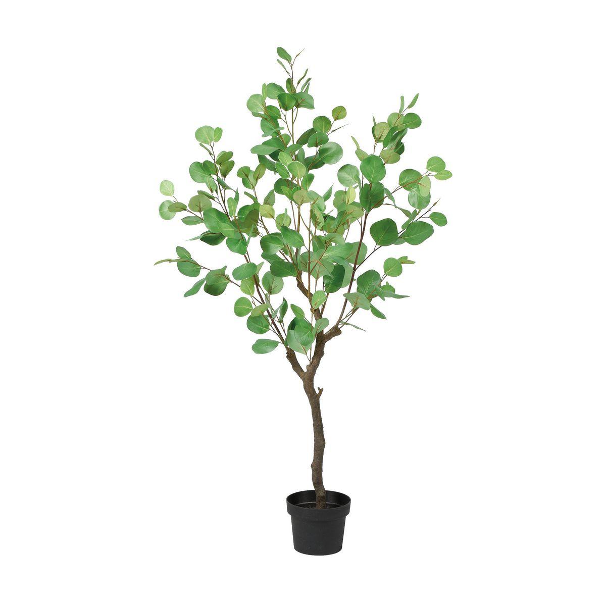 【人工観葉植物】アスカ/ユーカリ(ポット付) #051A グリーン/A-50966-51A【01】【取寄】