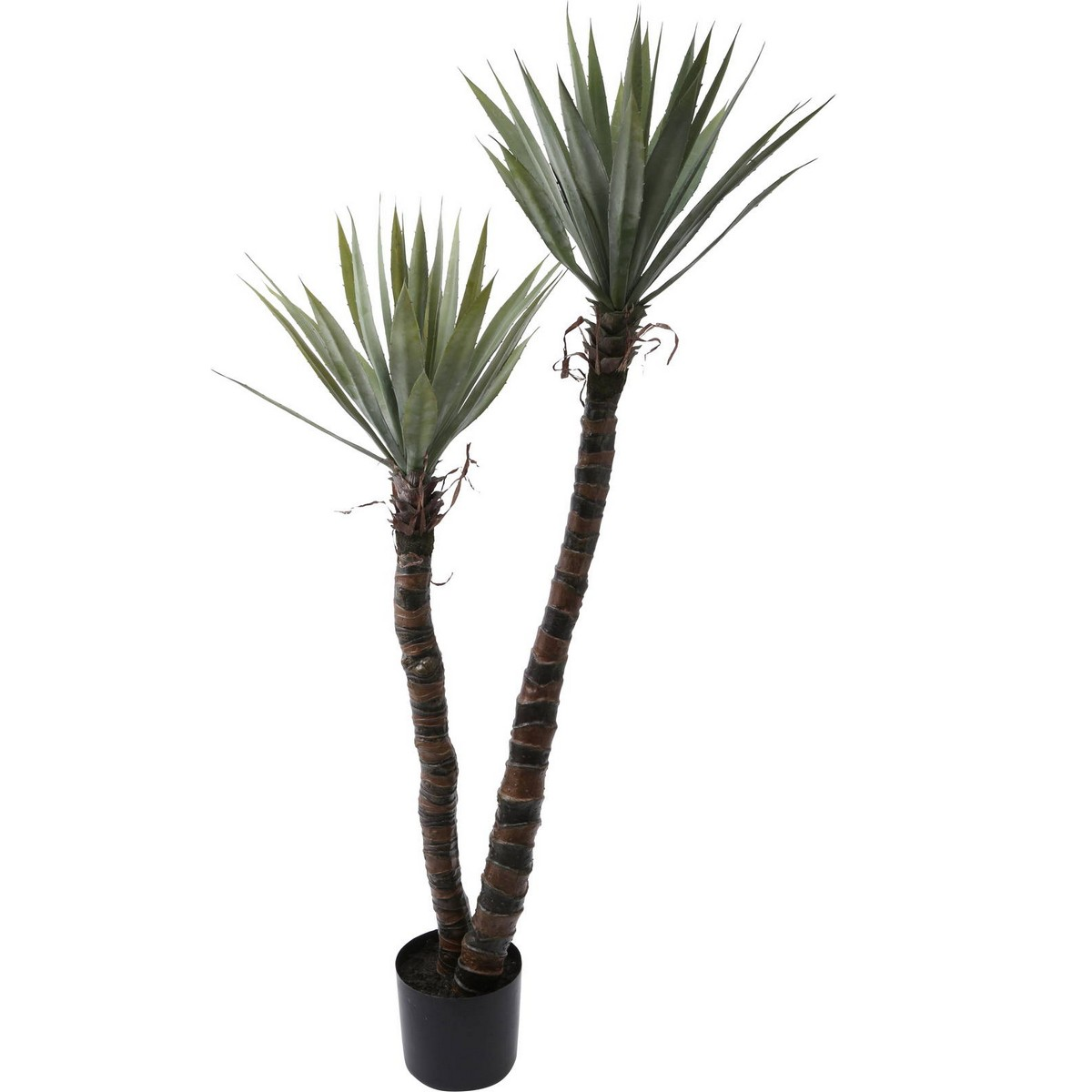 【人工観葉植物】YDM/アガベエレファンティペス GR/GLP-1525-GR【01】【取寄】