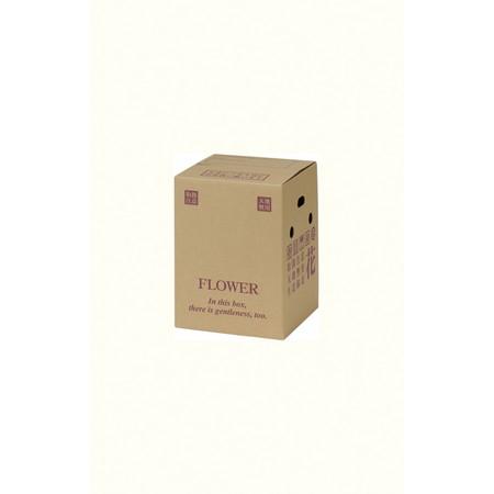 【直送】HOSHINO/宅配BOX  PS-102/313052※返品・代引・キャンセル不可【01】[40組]