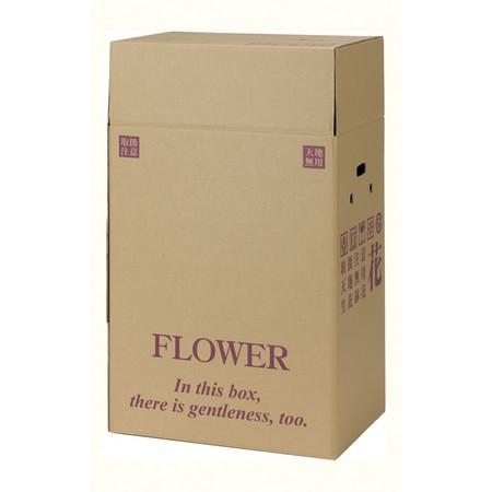 【直送】HOSHINO/宅配BOX  PS-115/313065※返品・代引き不可【01】[10組]《 ラッピング用品 ・梱包資材 ラッピング箱・梱包箱 宅配ボックス 》