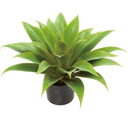 【直送】【人工観葉植物】YDM/アガベエレミーティアナM/GLP1476※返品・代引・キャンセル不可【01】