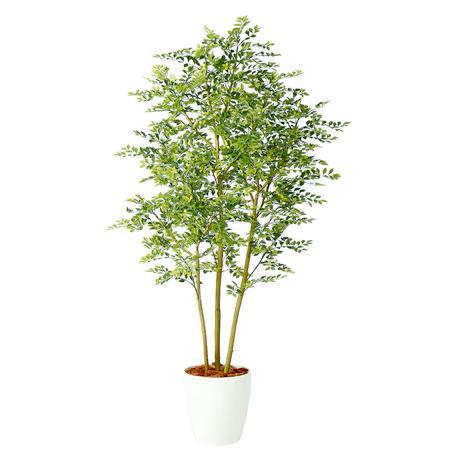 【直送】【人工観葉植物】ゴールデンリーフFST180(器タイプ:RP-300)98969※画像は器タイプ(RP)器要確認【07】【07】《 造花(人工観葉植物) 人工観葉植物「か行」 その他「か行」人工観葉植物 》