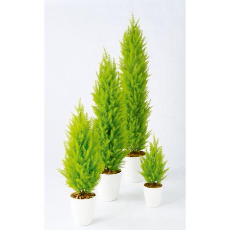 【直送】【人工観葉植物】ゴールドクレストツリー150(器タイプ:RP-265)98835※画像は器タイプ(RP)器要確認【07】【07】《 造花(人工観葉植物) 人工観葉植物「か行」 ゴールドクレスト 》