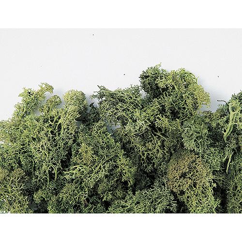 【プリザーブド】東北花材/フィンランドモス大袋 アンティ-クグリーン 約1kg/71126【01】【01】【取寄】