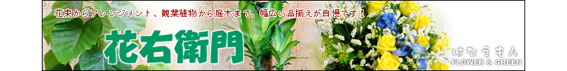 花右衛門:アレンジや花束、観葉植物や鉢物など豊富な品揃えが自慢!!