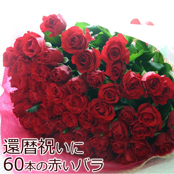 100%本物 【送料無料】長寿のお祝い・還暦祝いに赤いバラ! 赤バラ 赤バラ 60本の花束(等級S), 輝く高品質な:eda9228f --- hortafacil.dominiotemporario.com