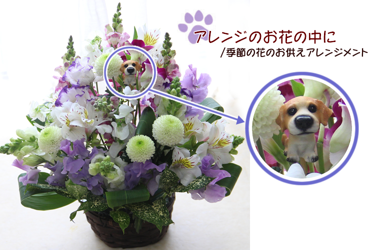 hanakikyo | Rakuten Global Market: Doll dog plus flowers! Dalmatians ...