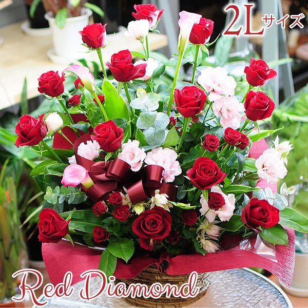花 赤いバラ レッドダイヤモンド 2Lサイズ フラワーアレンジメントギフト 誕生日 お祝 花ギフト 花宅配 プレゼント 送別会 退職祝い プロポーズ レッドローズ